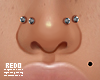 Double nostrils