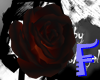 Anyskin Flower Tail F