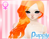 [Pup] Loretta Tangerine