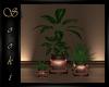 $ Cozii Plant Trio