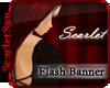 (Ss) Banner: Flash