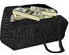 Bag of Money cash