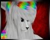 C; ZoomW Hair M