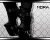 ℳ - Stibble|Heels V2