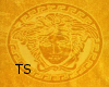 (TS) Versace Towel
