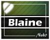 *NK* Blaine (Sign)