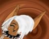 *Pwn* Choco Kitteh Skin