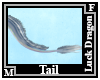 Luck Dragon Tail