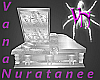 (VN) Glass Couple Coffin