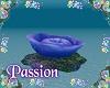 P- Mermaid Coral Bed