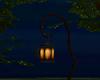Enchanted Lantern