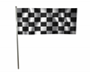 Race Flag with sound GO