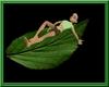 {R}Navi Leaf Couple Bed