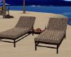 ~TQ~Tropical beach loung