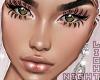 !N Wellesv2 Lash+Brows+E