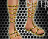 Pharoah Sandals Gold