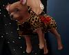 (ZN) Chihuahua Purse