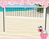 ! Volley Ball Net Ball