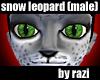 Snow Leopard Skin (Male)