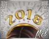 ♬~ 2018 Party Hat GSl1