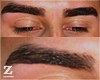 Asteri | eyebrow design