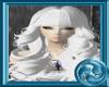 +Blanc Eveolidis+