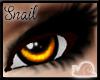 -Sn- Uni Eyes Orange V2