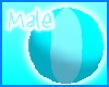 S.S.B. Male Beach Ball