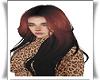 [C] Zahra Hair
