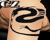 Tatto Big Dragon Seal CZ