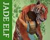 [JE] Tiger Hug