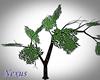 Animated climbing tree