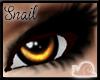 -Sn- Uni Eyes Orange V3