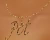 BBW Pet Necklace 4
