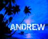 Andrew Pic