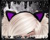 |H Purple Kitty Ears