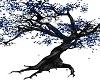 Night Springs Tree