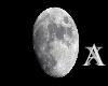 Axiom's - Lycan Moon