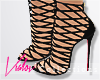 ❤ Transline Heels