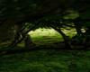 Celtic Forest Surround