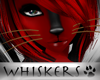 Whiskers :Brown Whiskers