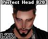 Perfect Head B20