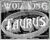 WS ~ Studded Taurus Chkr