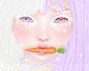 Bun Bun Carrot