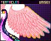 ⭐ Angel Wings Doki