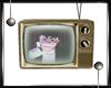 _F Society TV