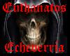 Echeverria Home