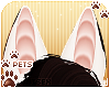 [Pets] Whiskey | ears v3