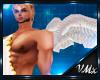 V► Alas Cupido