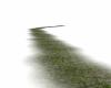 TD Deschainte stone path